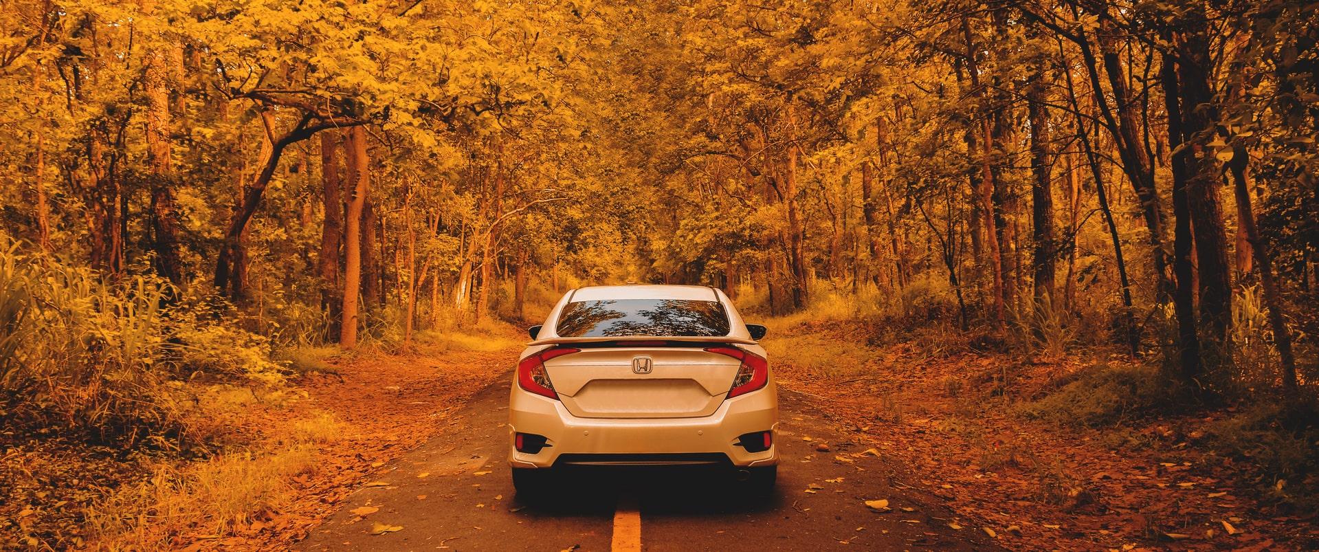 L'automne à l'horizon : comment préparer son véhicule et sa conduite ?