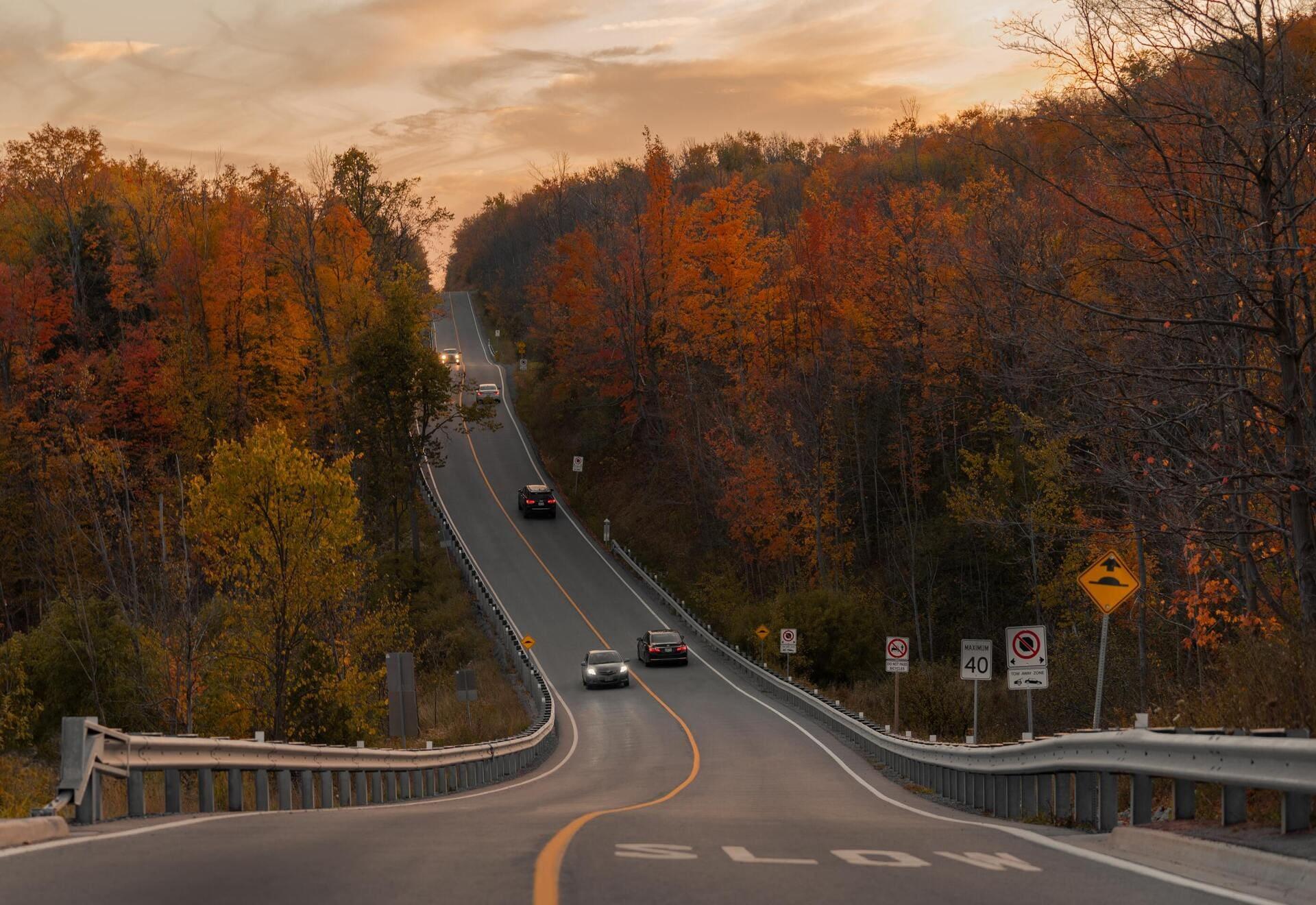 Où en est le marché auto à l'automne 2020